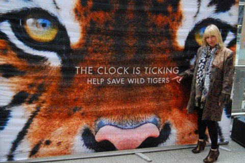 Save Wild Tigers – St Pancras event