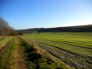 View of the Ridgeway near Streatley